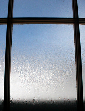 Fogged Windows with trapped condensation